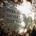 Ever Present Never Twice The Same by Natasha Marco