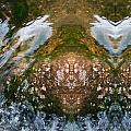 Faces In Water II by Lanita Williams