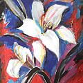 Fair Pure Fragile White Lilies by Esther Newman-Cohen