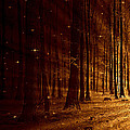 Fairy Forest by Heike Hultsch