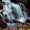 Fall At Ricketts Glen by Jeffrey Wonders