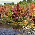Fall At The River by Leona Bessey