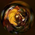 Fall Colorball by Jouko Lehto