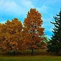 Fall Colors by Richard Jenkins