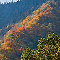 Fall Smoky Mountains by Melinda Fawver