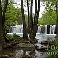 Falling Water by Deanna Cagle