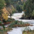 Falls by Linda Kerkau