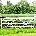 Farm Gate by Tom Gowanlock