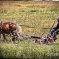 Farming With Horses by Janice Pariza