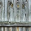Fence Detail by Tom Gowanlock