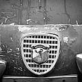 Fiat Grille Emblem by Jill Reger