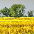 Fields Of Yellow by Brian Mollenkopf