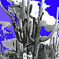 Film Homage Victor Fleming Jean Harlow Bombshell 1933 Saguaro Nat'l Monument Tucson 2008 by David Lee Guss