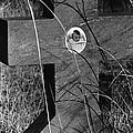 Film Noir Dana Andrews Linda Darnell Fallen Angel 1945 Child's Grave Ghost Town Golden Nm 1972 by David Lee Guss