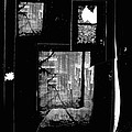 Film Noir Signe Hasso Lloyd Nolan House On 92nd Street 1945 Collage Antlers Hotel Victor Co 1971-'10 by David Lee Guss