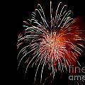Fireworks by Grace Grogan
