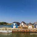 Fishing Dock In Prince Edward Island  by Elena Elisseeva