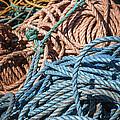 Fishing Ropes by Elena Elisseeva