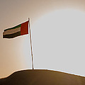 Flag In The Desert by Domingos Soares