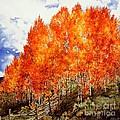Flaming Aspens 2 by Barbara Jewell