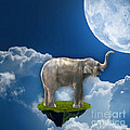 Flight Of The Elephant by Marvin Blaine