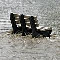 Flooded Seat  by Jamie  Smith