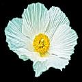 Flower 3 by Ingrid Smith-Johnsen