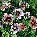 Flower Study I by Steven Schultz