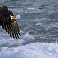 Flying Over Ice by J L Woody Wooden