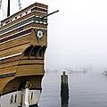 Foggy Harbor by Janice Drew