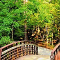 Folsom Bridge At Furnace Creek by Maria Urso