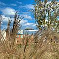 Founders Hall Through The Grasses by Mark Dodd