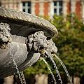 Fountain - Place Des Vosges by Brian Jannsen