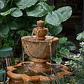 Fountain by Carol Ailles