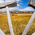 Framed View Of Bodie Ghost Town by Jerome Obille