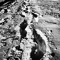 fresh footprints crossing deep snow in field towards small rural village of Forget Saskatchewan Cana by Joe Fox