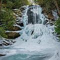 Frozen Catawba by Joye Ardyn Durham