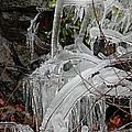 Frozen V by Suzanne Gaff