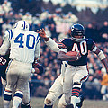 Gale Sayers by Retro Images Archive