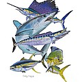 Gamefish Collage by Carey Chen
