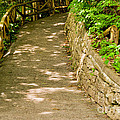 Garden Path by Les Palenik