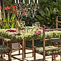 Garden Table Setting by Sophie McAulay