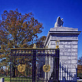 Gate To Arlington Cemetery by Mountain Dreams