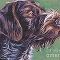 German Wirehaired Pointer by Lee Ann Shepard