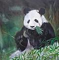 Giant Panda 1 by Jenny Lee