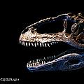 Giganotosaurus Skull 3 by Weston Westmoreland