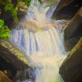 Glen Iris Waterfall by William Norton