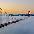 Golden Gate Dawn by Denise Cottin