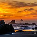 Golden Harris Beach Sunset - Oregon by Gary Whitton