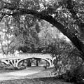 Gothic Bridge by Jessica Jenney